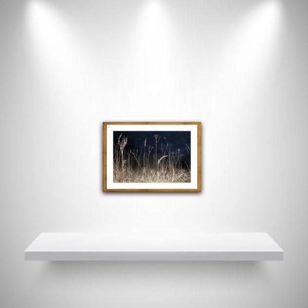Meike Männel: In The Field, AM, 29,7 x 42 cm, IM 24 x 36 cm, 2019