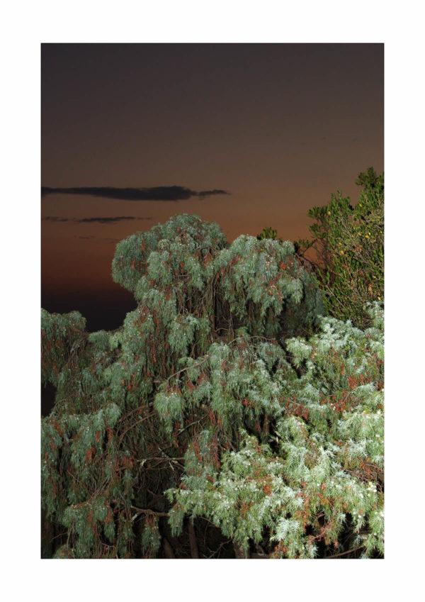Meike Männel: Paradise #3, 2017, AM 29,7 x 42 cm, IM 24 x 36 cm