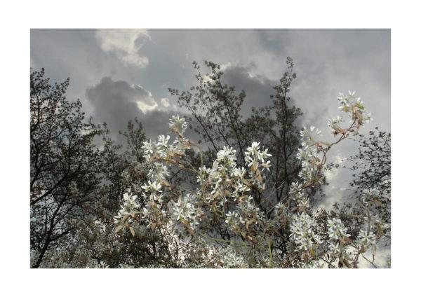 Meike Männel: o.T., 2018, AM 29,7 x 42 cm, IM 24 x 36 cm